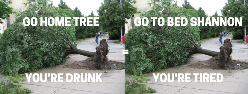 go home, tree